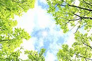 環境にやさしいクリーンな自然エネルギー